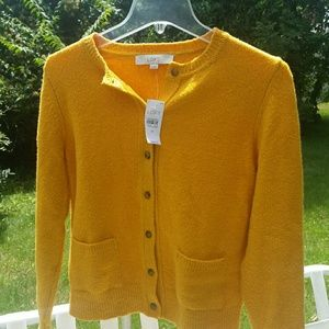 Ann Taylor Loft Yellow Button Down Sweater